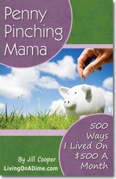 7 Ways To Pinch Your Pennies by Pinching 500 Ways I Lived On 500 A Month