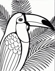 Parot Colouring Pages Page 3 sketch template