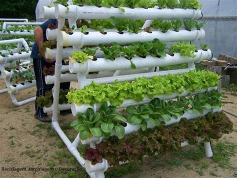Vertical Vegetable Garden Planters by Diy Pvc Gardening Ideas And Projects