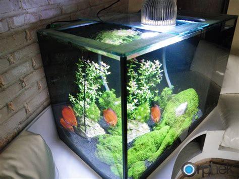 led lights for planted freshwater aquariums pr72 led pendant series