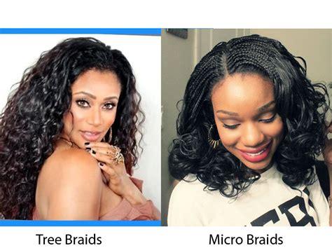 cornrow tree braids vs individual tree braids tree braids vs micro braids ilookwar com