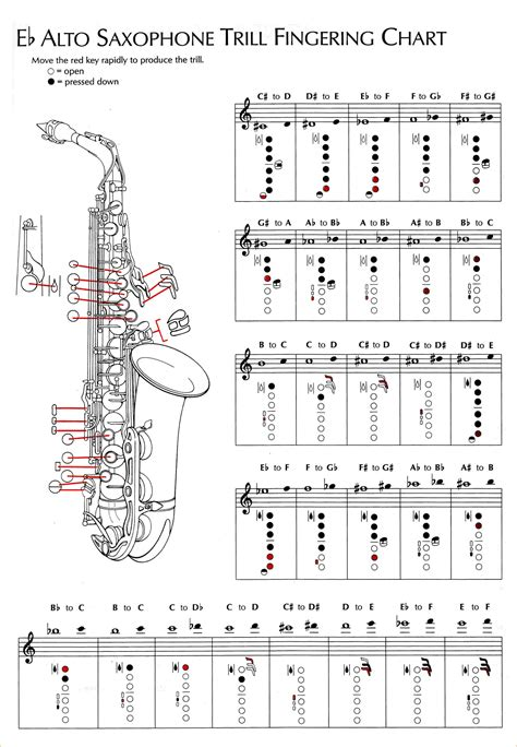 Examples Of Resume Title by Saxophone Fingering Chart Eb 20alto 20sax 20trill