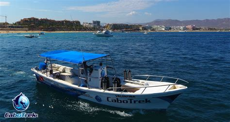 panga boats pros and cons whale watching boat cabo whale trek
