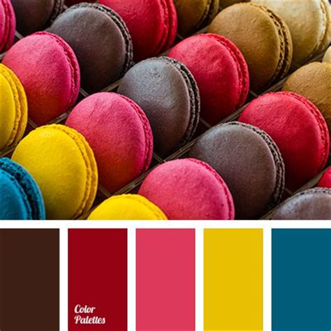 blue color bright pink burgundy cherry macaroon color chocolate color coffee colored