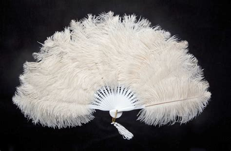 large feather fans ostrich feather fans pictures to pin on pinsdaddy