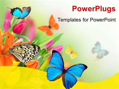 Powerpoint Template Spring Flowers With Exotic Butterfly Ppt Template Free