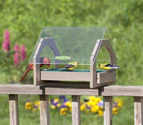 plexiglass bird feeder how to attract birds through bird
