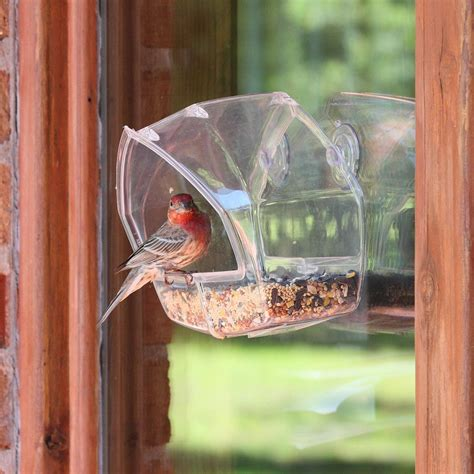 birdscapes clear window wild bird feeder