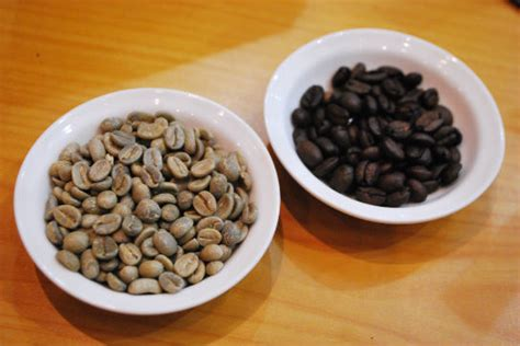 Rollaas Coffee kopi luwak coffee from cat poo the travel tart