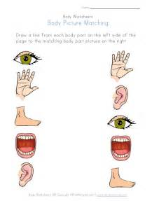 body part picture matching worksheet