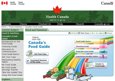 printable version canada s food guide food guide pyramid servings goji actives diet