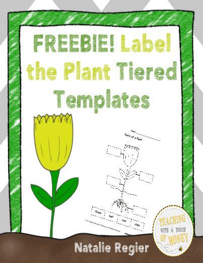 plant tag template 241 best images about plant ideas on