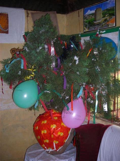kenya christmas tree photo