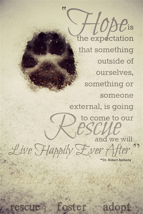 rescue quotes rescue quotes and poems