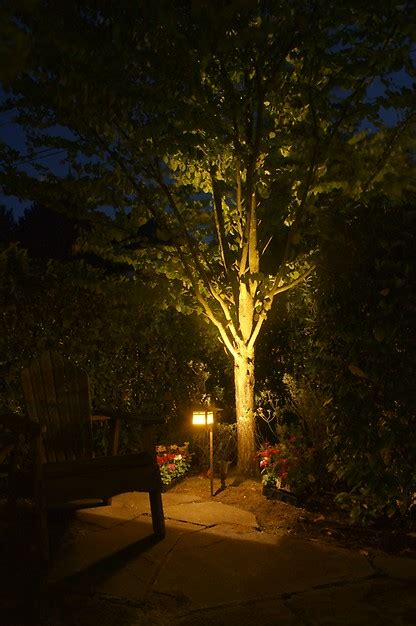 Outdoor Lighting Seattle Britescape Expert Landscape Lighting In Greater Seattle
