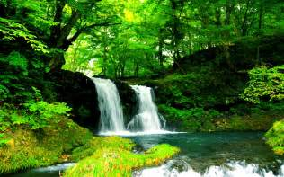 beautiful nature wallpaper collection for free download