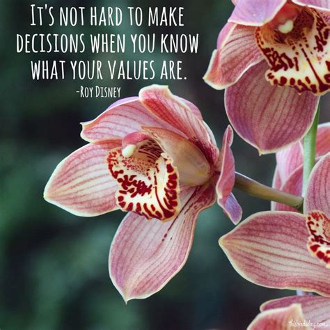 roy values 17 best value quotes on better quotes