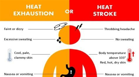 heat stroke signs doctors say look for warning signs of heat exhaustion katu