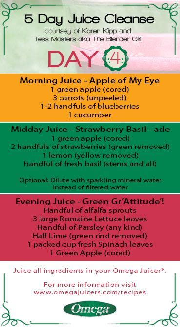 14 Day Detox Plan Juice Plus by Best 25 5 Day Juice Cleanse Ideas On 7 Day