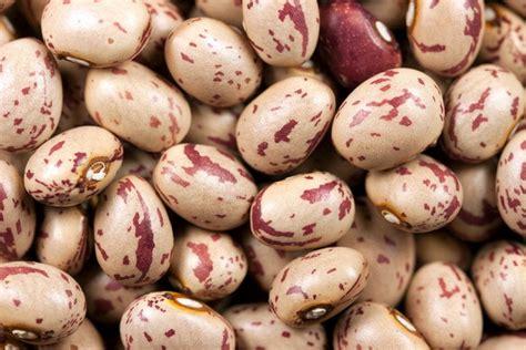 alimenti anti colesterolo e trigliceridi il decalogo dei cibi anti colesterolo repubblica it