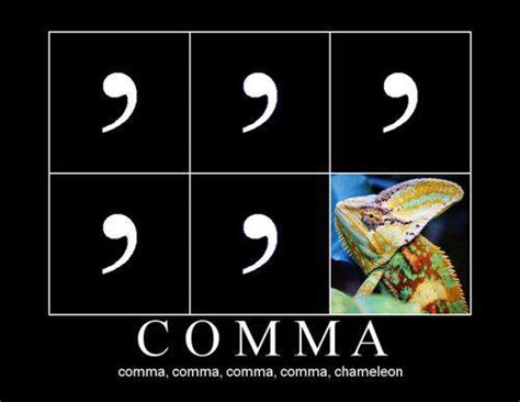 Comma Meme - comma comma comma comma comma chameleon jokes memes
