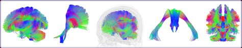 header design simple directions brain body stress lab