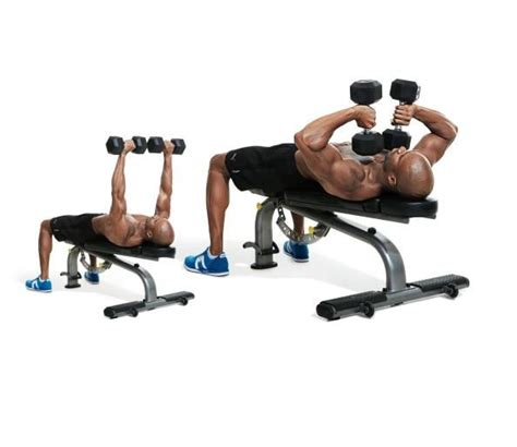 best exercise website the 30 best arms exercises of all time visit our website