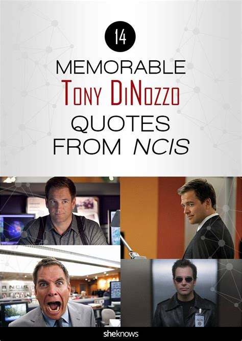 ncis tony funny 1087 best images about n c i s tv show on pinterest