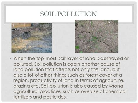 Essay About Land Pollution by Essay Land Pollution