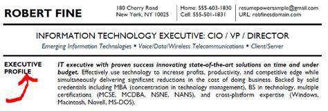 example cio cv executive summary tips resumepower