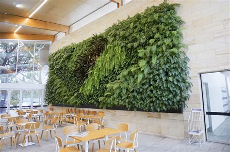vertical gardens green wall products atlantis corporation