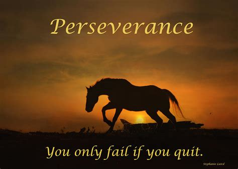 Horse Duvet Cover Perseverance Motivational Horse In The Sunset Photograph