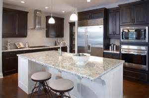 Kitchen Cabinets Gray 22 beautiful kitchen colors with dark cabinets home