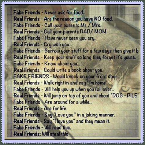 fake quotes friends vs real friends quotes quotesgram