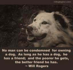 dogs in heaven quotes quotesgram