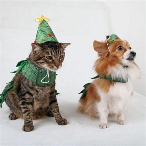 Como Hacer Lazos Navidenos #8: Como-hacer-disfraces-de-navidad-para-perros-y-gatos-perro-y-gato-600x600.jpg