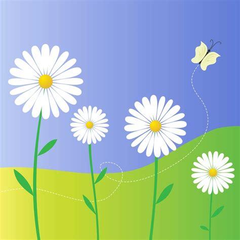 margherita fiori margherita fiori scaricare vettori gratis