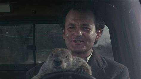 where to groundhog day best ambitious kevin s