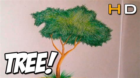 colored trees how to draw a tree with colored pencil step by step for
