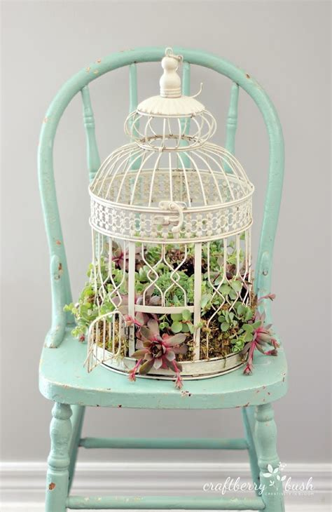 how to decorate a birdcage home decor how to plant succulents in a birdcage
