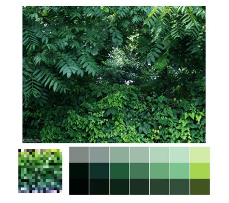 buy palette of nature color amazing nature color palettes ucreative com
