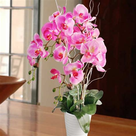 orchid delivery artificial orchids for sale singapore artificial