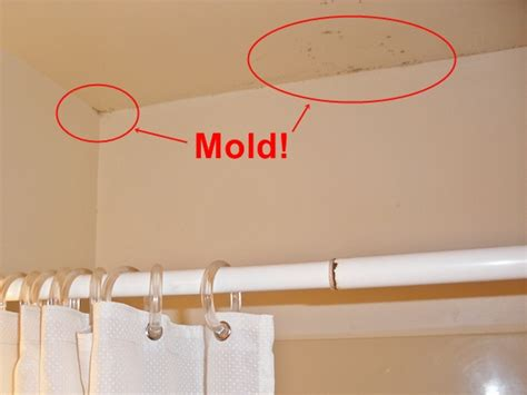 How To Remove Mold From Ceiling In Bathroom by Black Mold Removal And Prevention In Bathroom