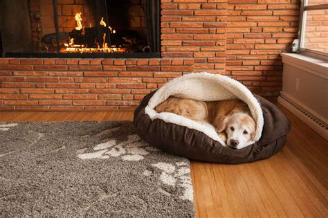 dog bed cave replacement cover snoozer cozy cave dog bed 12 colors