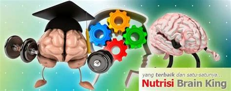 Vitamin Brainking Plus jual brainking plus nutrisi otak bigking original