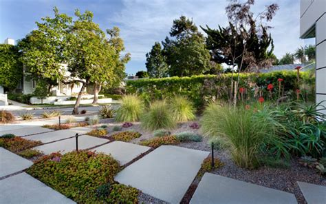 contemporary landscape design eckerling landscape