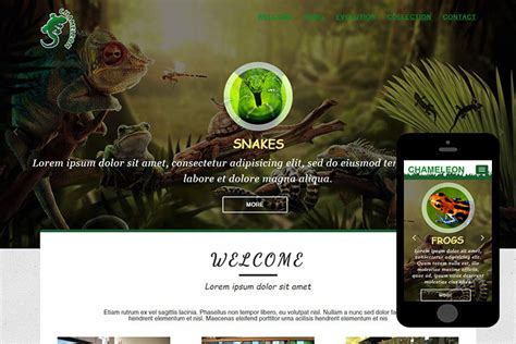 themes and templates chameleon free bootstrap themes 365bootstrap