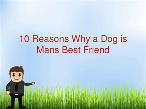 10 Reasons Why Cats Are A Best Friend by 10 Reasons Why A Is Mans Best Friend
