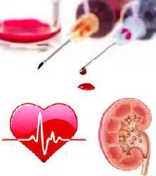 Alat Tes Darah Lengkap tes kimia dalam darah artikel informasi baru