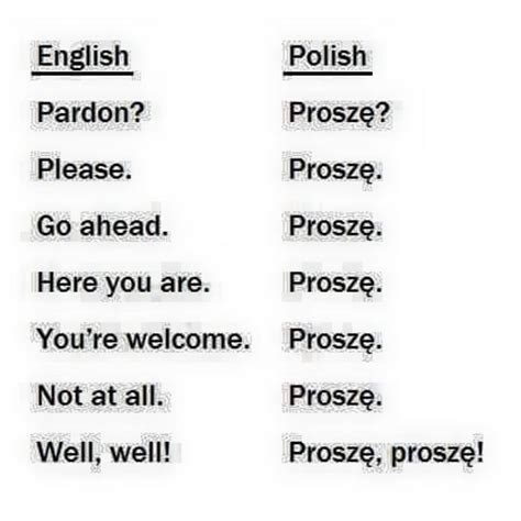 Russian Language Meme - best 25 learn polish ideas on pinterest polish language